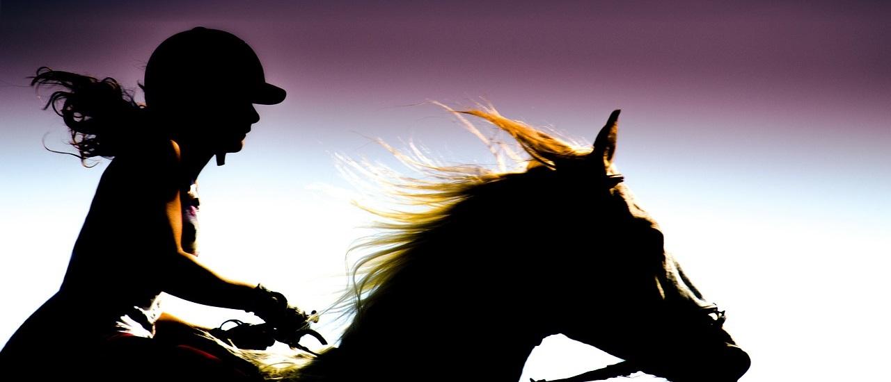 Rider 197056 1280